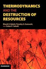 Thermodynamics and the Destruction of Natural Resources