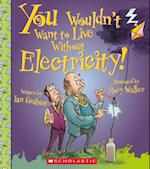 You Wouldn't Want to Live Without Electricity! (You Wouldnt Want to Live Without)