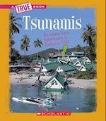 Tsunamis af Chana Stiefel