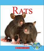 Rats (Nature's Children)