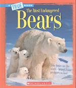Bears (True Books)