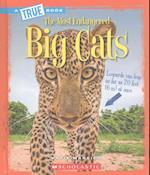 Big Cats (True Books)