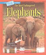 Elephants (True Books)
