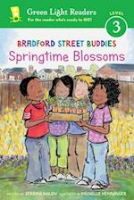 Bradford Street Buddies (Green Light Readers Level 3)
