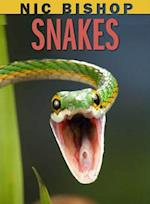 Snakes (Scholastic Readers, Level 2)