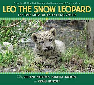Leo the Snow Leopard