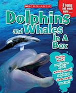 Dolphins & Whales in a Box (In a Box)