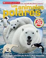 Los animales polares / Polar Animals af Susan Hayes