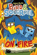 Bird & Squirrel on Fire (Bird Squirrel)