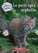 Le Petit Lynx Orphelin