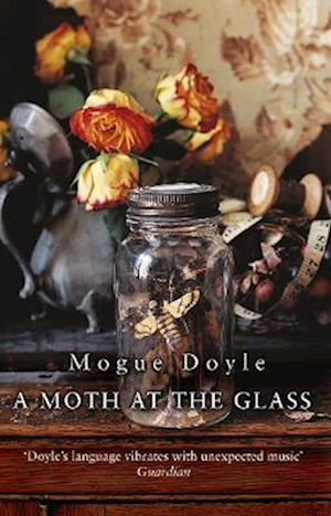 A Moth At The Glass