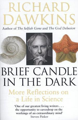 Bog paperback Brief Candle in the Dark af Richard Dawkins