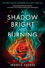 A Shadow Bright and Burning (Kingdom on Fire)