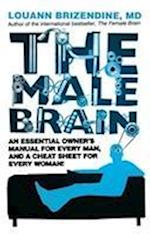 The Male Brain
