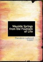 Wayside Springs from the Fountain of Life af Theodore L. Cuyler