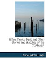 A New Mexico David and Other Stories and Sketches of the Southwest af Charles Fletcher Lummis