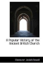 A Popular History of the Ancient British Church af Ebenezer Josiah Newell