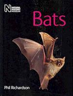 Bats af Phil Richardson