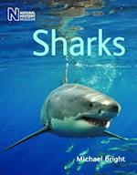Sharks af Michael Bright