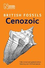 British Cenozoic Fossils (British Fossils)