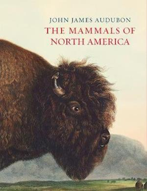 The Mammals of North America