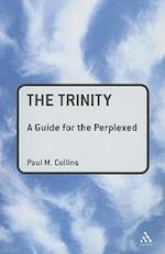 The Trinity (Guides for the Perplexed)