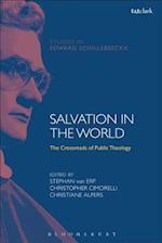 Salvation in the World (T t Clark Studies in Edward Schillebeeckx)
