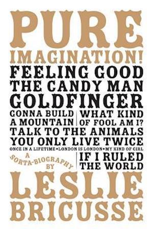 Pure Imagination: a sorta biography