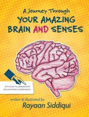 A Journey Through Your Amazing Brain and Senses