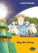 Lighthouse Year 2 Gold Big Bo Peep Teachers Notes (Lighthouse)