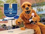 Ice Cream U