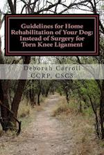 Guidelines for Home Rehabilitation of Your Dog