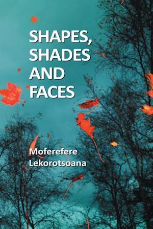 Shapes, Shades and Faces