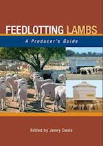 Feedlotting Lambs