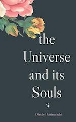 The Universe and its Souls