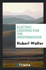 Electric Lighting for the Inexperienced af Hubert Walter