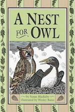 A Nest for Owl (Scott Foresman Reading Yellow Level)