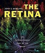 The Retina af John E. Dowling