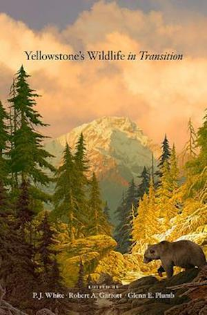 Yellowstone's Wildlife in Transition