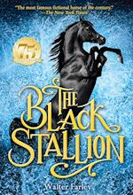 The Black Stallion (Black Stallion)