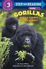 Gorillas