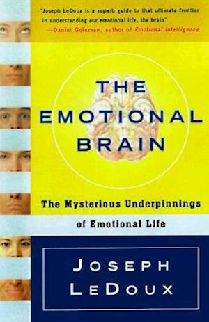 the emotional brain ledoux pdf