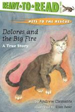 Dolores and the Big Fire (Ready-to-Read. Level 1)