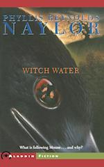 Witch Water af Phyllis Reynolds Naylor