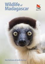 Wildlife of Madagascar (Wild Guides)