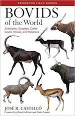 Bovids of the World (Princeton Field Guides)