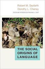 The Social Origins of Language (Duke Institute for Brain Sciences Series)