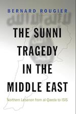 The Sunni Tragedy in the Middle East (Princeton Studies in Muslim Politics)