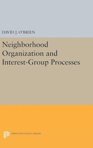 Neighborhood Organization and Interest-Group Processes