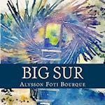 Big Sur af Alysson Foti Bourque